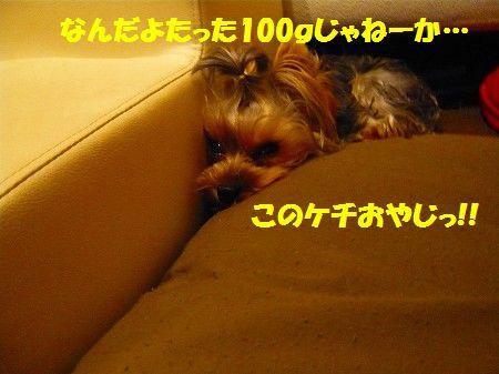 s-P1020467.jpg
