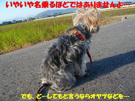 s-P1020477.jpg