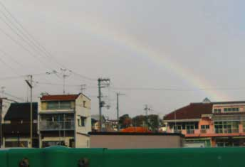 rainbow2012.jpg
