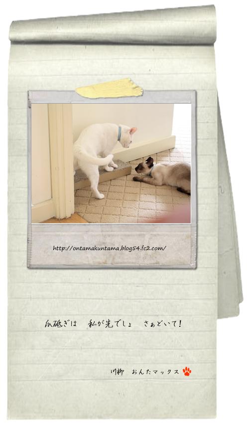 cat09101301