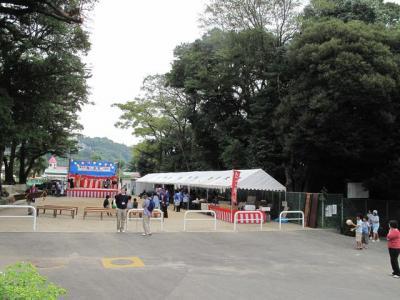 IMG_2011a.jpg