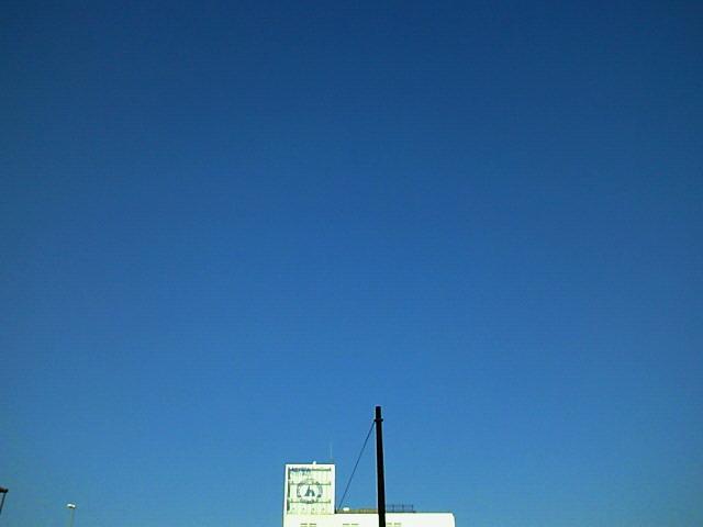 NEC_0239.jpg