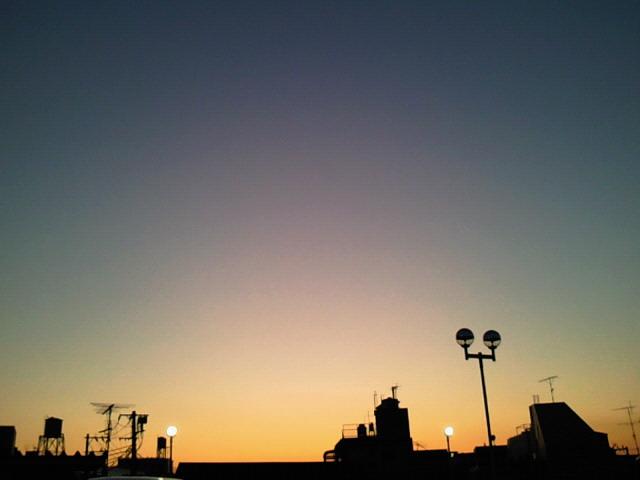 NEC_0288.jpg