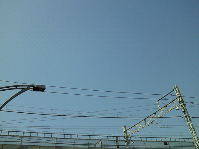 NEC_0401.jpg