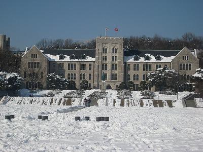 雪の高麗大