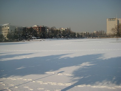 雪の建国大