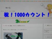 PA030598-1.jpg
