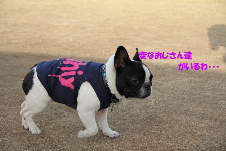 IMG_4604.jpg