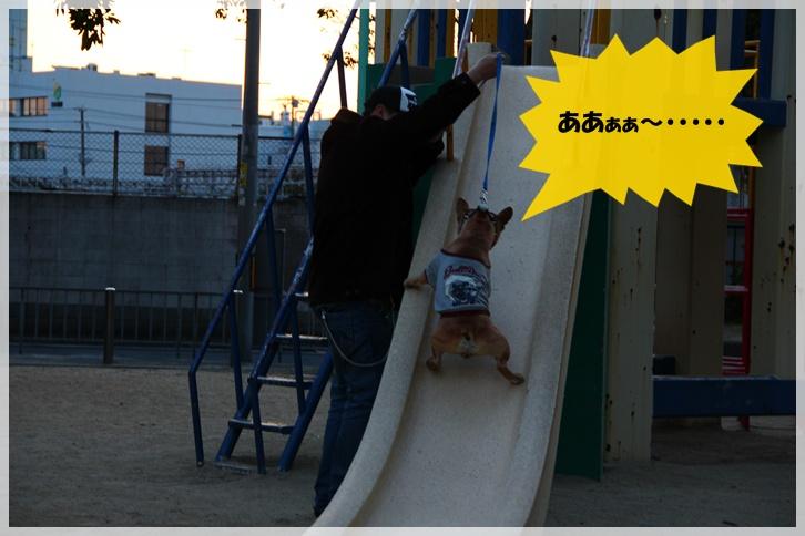 IMG_6205_20110330191518.jpg