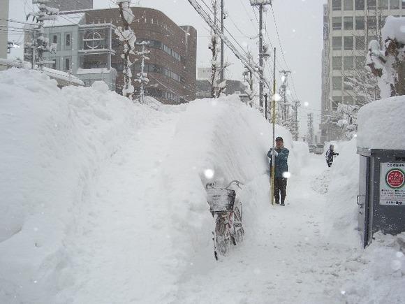 青森市の雪景色2