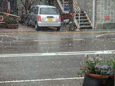 大規模なごり雪