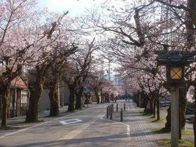2010.4.8 神明通り