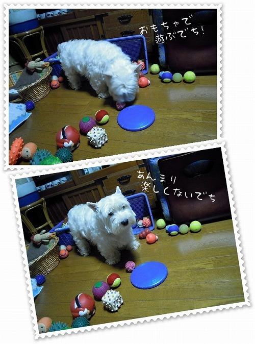 りゅん玩具で遊ぶ