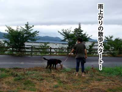 ryouma_001.jpg