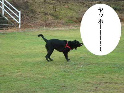 ryouma_002.jpg