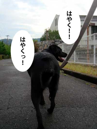 ryouma_007.jpg