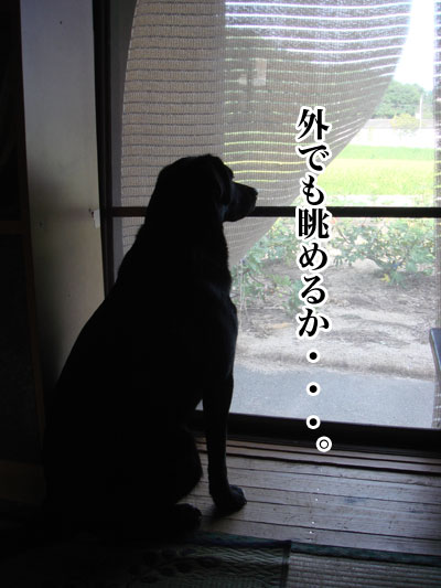 ryouma_024.jpg