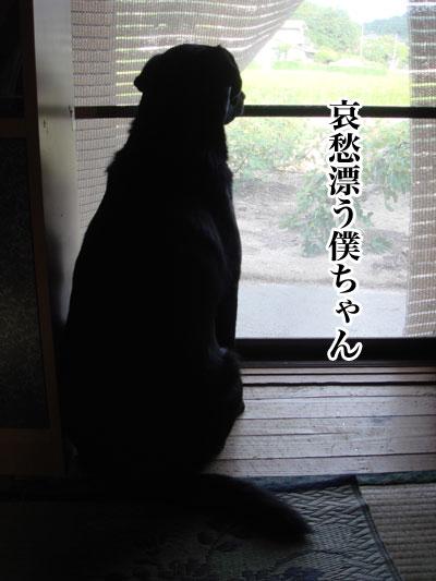 ryouma_025.jpg