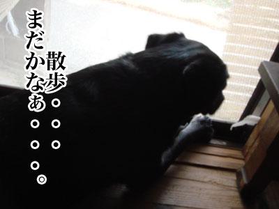 ryouma_029.jpg