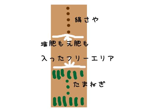 2009_11_17_01.jpg