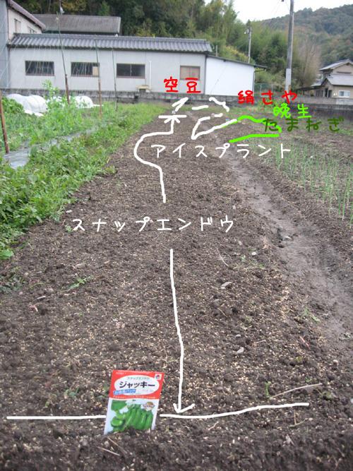 2009_11_17_03.jpg