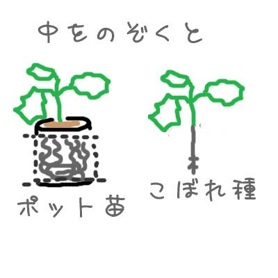 2010_10_20_01.jpg