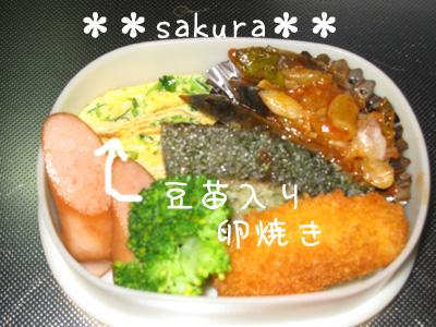 2010_11_1.jpg