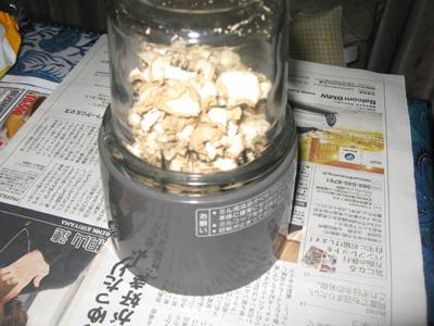 2010_12_28_02.jpg