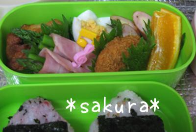 2011_05_13_01.jpg
