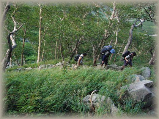 dh6 岳沢を行く登山グループ