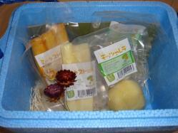 北海道からチーズの贈り物がありました!