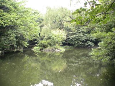 三四郎池(育徳園心字池)