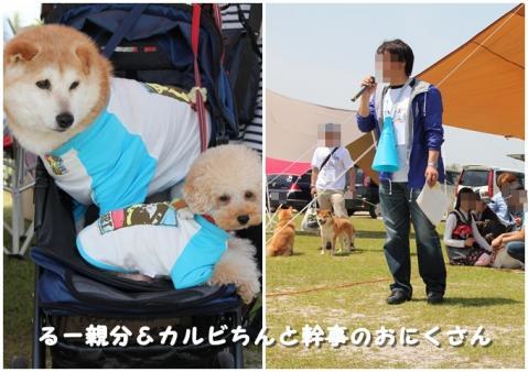 page 柴犬クラブアメーバオフ会