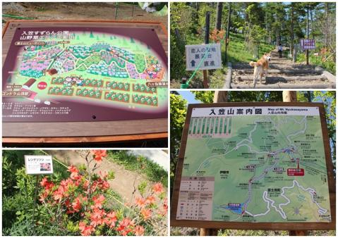page 入笠山3