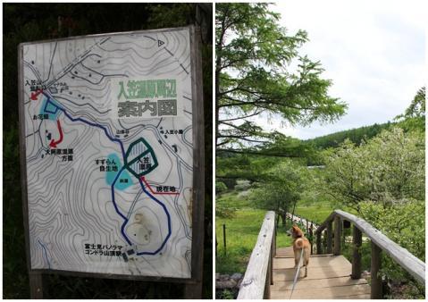 page 入笠山5