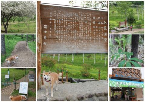 page 入笠山10