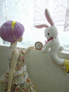 人間には小さすぎるくらいのサイズですがお人形さんにはぴったりサイズ!(な気がします)