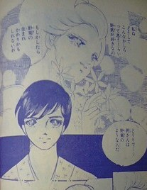 野菊の墓5