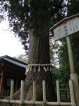塩釜神社5