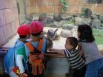 八木山動物園2