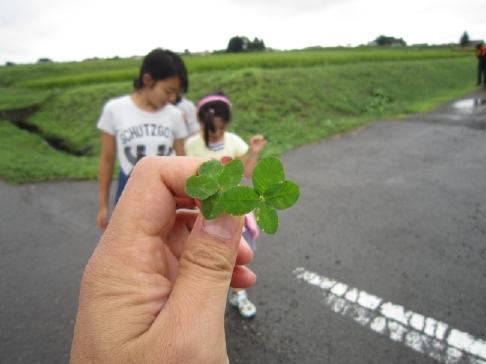 20110821散歩6