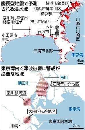 津波 首都圏浸水域