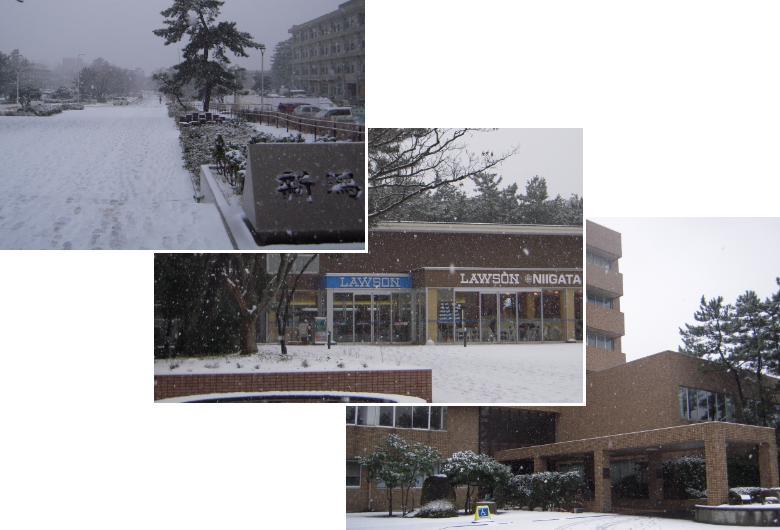 101217雪