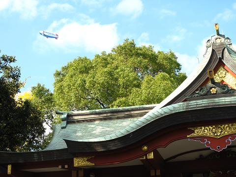 2010 多摩川散歩 024