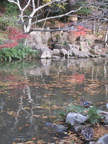 2010 多摩川散歩 049