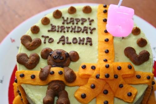 アロたんケーキ