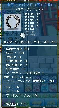 Maple111129_185432.jpg