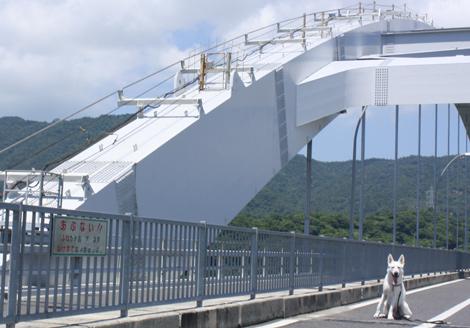 大三島大橋の上で