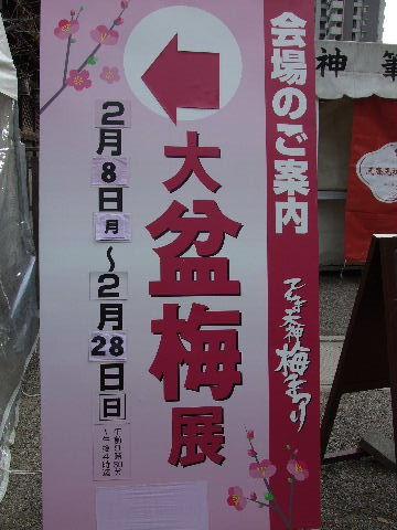 2010_02230002.jpg