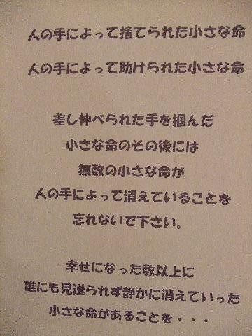 2010_05310100.jpg